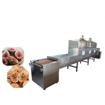 Microwave Baking and Sterilizing Pine Nuts Hazelnuts Pistachios Drying Machine