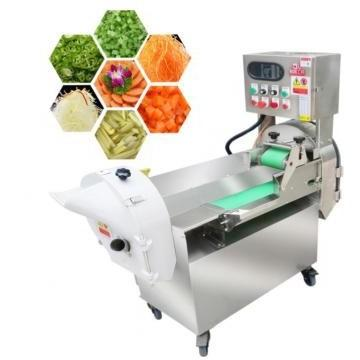 Fully Automatic Frozen French Fries /Banana Slice/Potato Chips Production Line