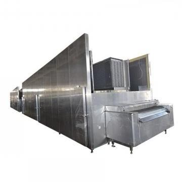 Fruit and Vegetable Quick Frozen Line/Food Processing Production Line